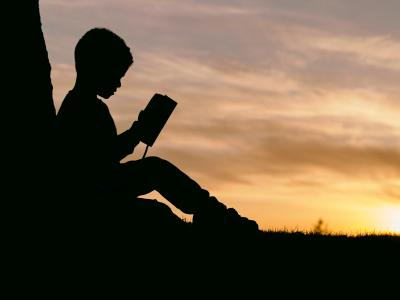 silhouette of boy reading against a tree at sunset